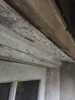 lead inspector misses flaking paint in baltimore, Md.